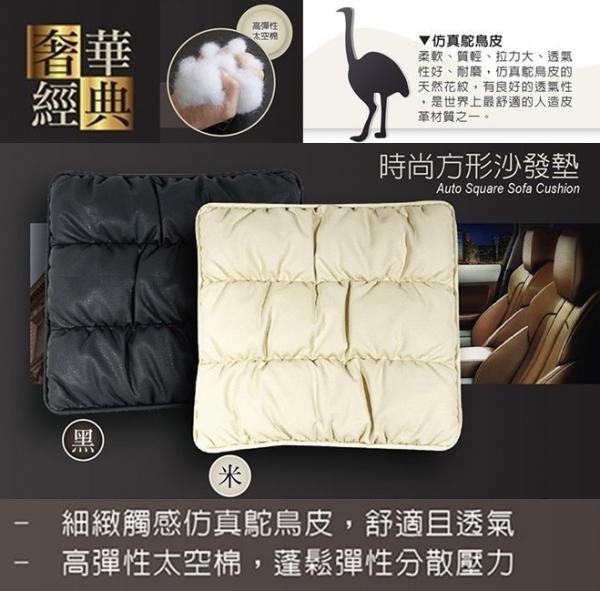安伯特時尚方型沙發墊 高科技太空棉 舒適 透氣 耐磨ABT-A024B 黑色 安伯特時尚方型沙發墊 高科技太空棉 舒適 透氣 耐磨ABT-A024B 黑色