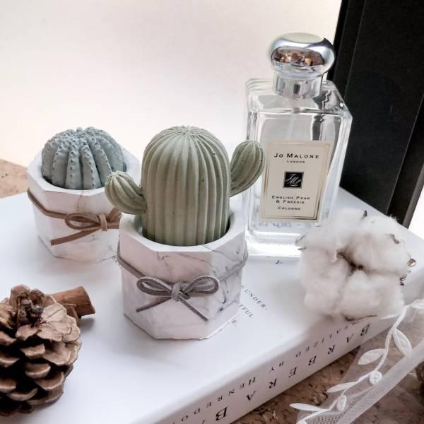 【香氛磚】桌上型仙人掌盆栽小手款(附5ml精油) 擴香石,香氛磚,仙人掌