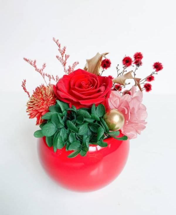 【迎春永生盆花】Happy 牛 year 永生盆花,永生玫瑰