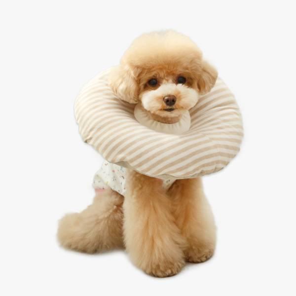 【ITS DOG】有機寵物頸套 條紋款 月星球,拜託了女神,dalnara,費洛蒙,信息素,沐浴乳