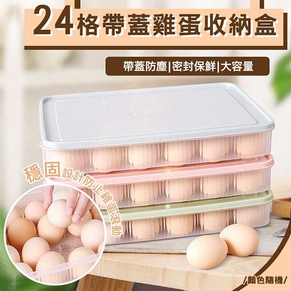 24格帶蓋雞蛋收納盒 超值二入(隨機出貨)
