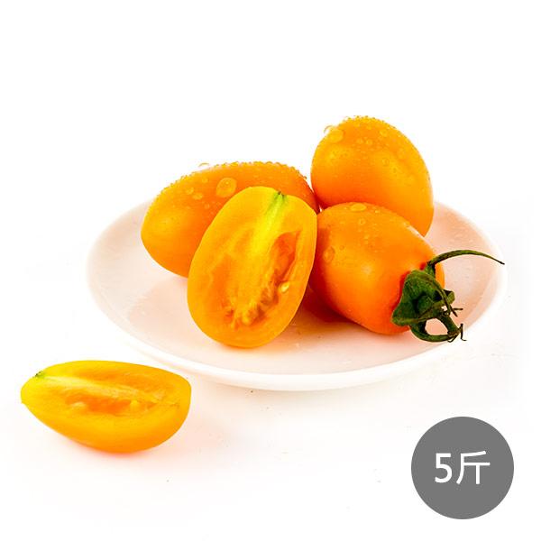 *地推團購*【高雄美濃】澄蜜番茄5斤
