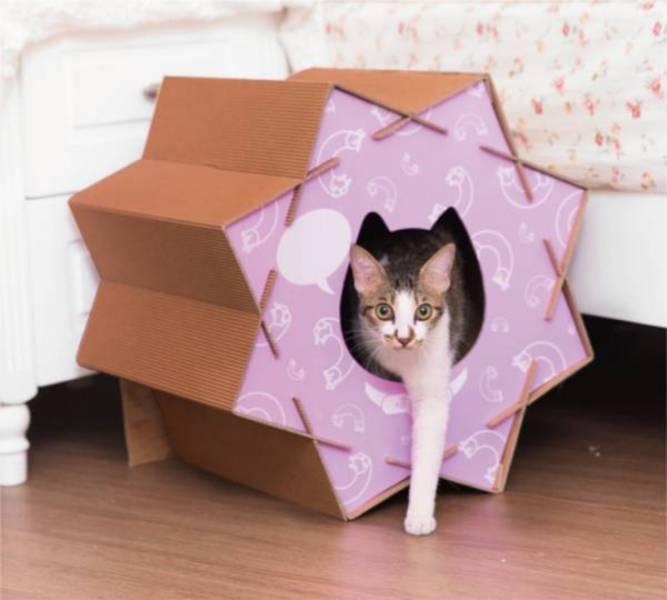 【喵滾滾】迷情紫- (喵屋是貓窩,是貓抓板,也是貓隧道~) design handmade natural系列 創意 簡約 設計 貓屋 貓抓板 貓跳台