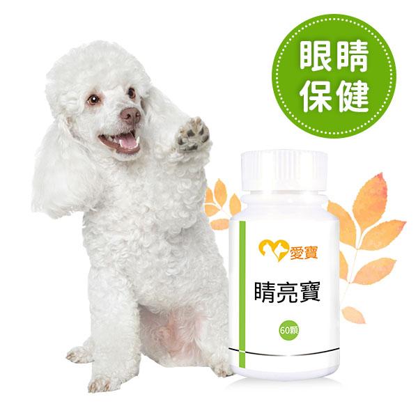 狗狗-睛亮寶60顆/瓶 寵物,狗狗,白內障,狗狗眼睛,葉黃素