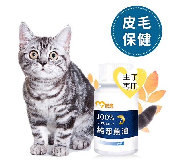 貓貓 - 100%PURE 純淨魚油 寵物保健食品,愛寶 寵物,魚油,化毛,皮毛保健,幫助排便,毛球症,便祕,寵物魚油,化毛膏