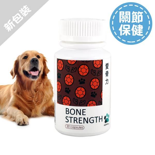狗狗-愛骨力30顆/瓶 寵物保健食品,愛寶 寵物,寵物,狗狗健康食品,關節,狗骨質疏鬆, 狗關節炎,愛骨力,寵物保健,狗保健食品,龜鹿雙寶