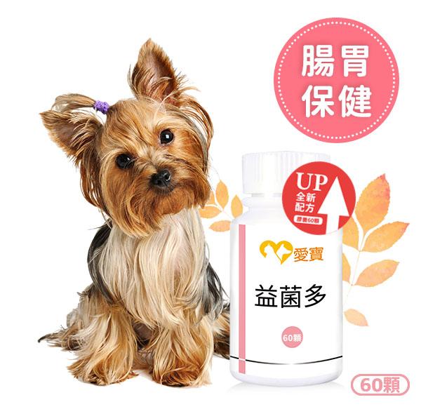 狗狗-益菌多60顆/瓶 寵物,狗狗,狗狗拉肚子,狗狗吐