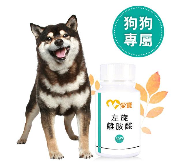 狗狗必備保健聖品-左旋離胺酸30g/瓶  寵物,狗狗,離胺酸,牛磺酸,保健品,寵物保健,愛寶寵物,寵物保健食品,左旋離胺酸,離胺酸 狗