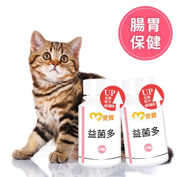 貓貓-益菌多2入組60顆/瓶 寵物保健食品,愛寶 寵物,寵物,狗狗健康食品,貓貓,貓貓拉肚子,貓貓吐,貓貓腸胃,貓貓反胃,貓貓吐酸水