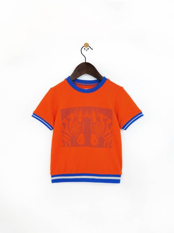 凝視.斑馬柔棉毛圈T恤 橘