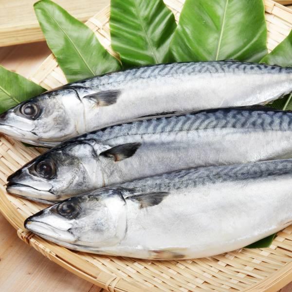 挪威薄鹽花鯖魚(整尾) 挪威薄鹽花鯖魚,鯖魚,醃製鯖魚,冷凍魚,冷凍海鮮,宅配海鮮