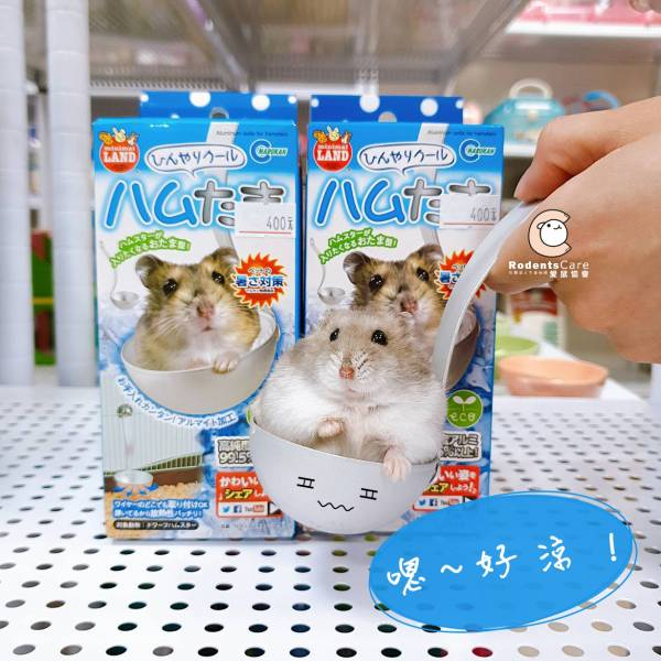 MARUKAN 鼠鼠用 鋁製涼窩 湯匙造型 散熱 MARUKAN 鼠鼠用 鋁製涼窩 湯匙造型 散熱