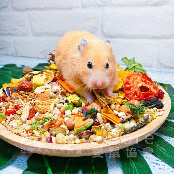 愛心認購 鼠類主食 愛鼠協會 愛心認購 倉鼠類主食