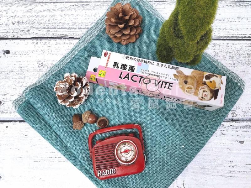 SANKO 小動物乳酸整腸膏 50g