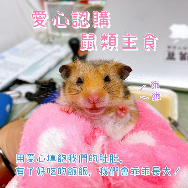 愛心認購 倉鼠類 主食 愛鼠協會 愛心認購 倉鼠類主食