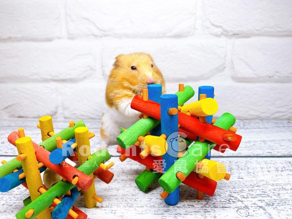 美國 KAYTEE 彩色積木 木製玩具 美國 KAYTEE 彩色積木 木製玩具