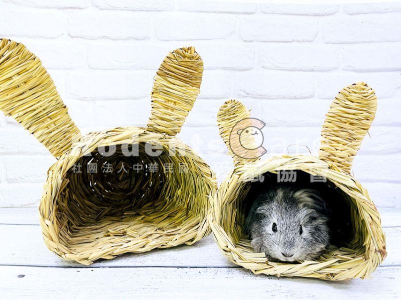 Canary 酷酷兔提摩西草草編窩 手工編織草窩  天竺鼠&兔兔可使用 小/大