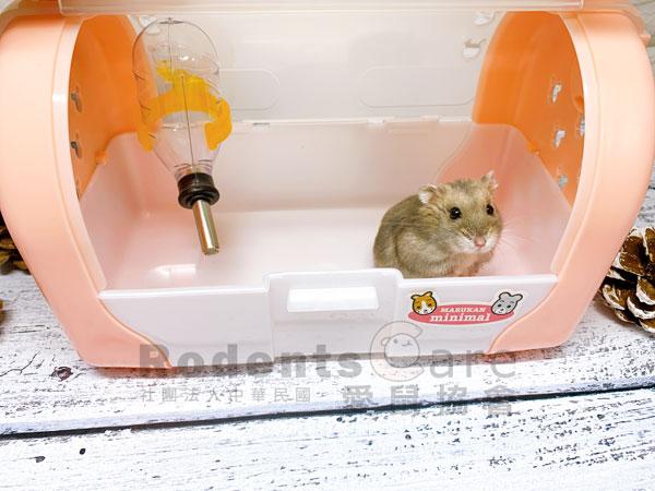 MARUKAN 鼠鼠運輸籠 外出籠 附水瓶 MARUKAN 鼠鼠運輸籠 外出籠 附水瓶 鼠鼠外出籠 外出籠 倉鼠