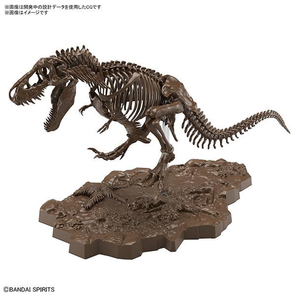 【預購】BANDAI 1/32 幻想骨骼系列 暴龍 組裝模型 (2021年07月)※不挑盒況
