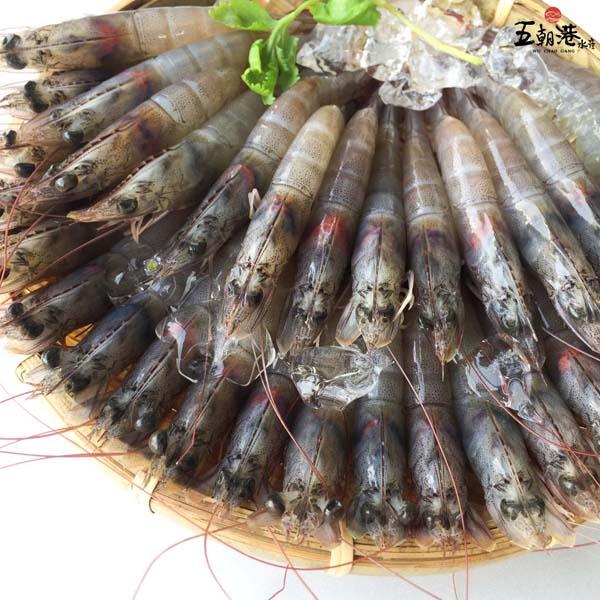 當季鮮甜中美白蝦60/70 850g±10% 白蝦,五朝港,台南永康,海鮮宅配,鮮甜白蝦,