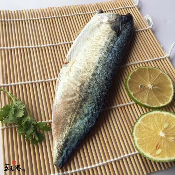 嚴選台灣鯖魚片(140-160G/片)
