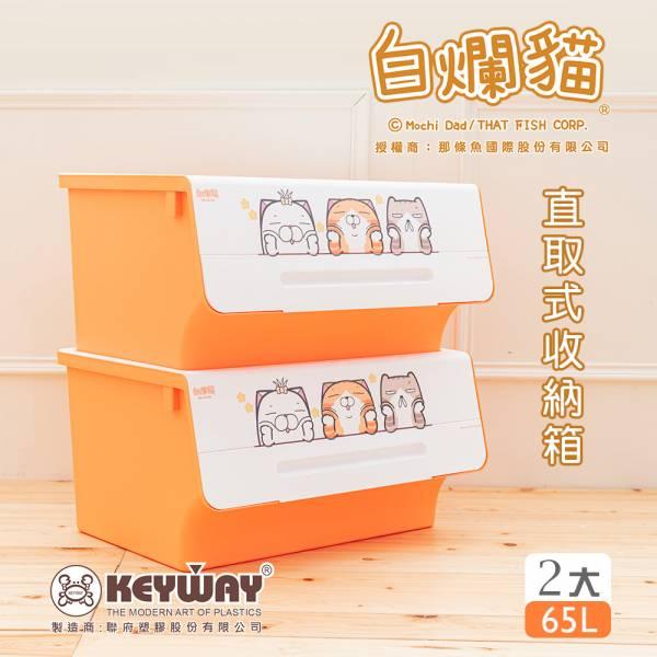 新款 白爛貓直取式收納箱(大) 二入 掀蓋內收式,塑膠箱,衣物收納,收納箱,置物箱