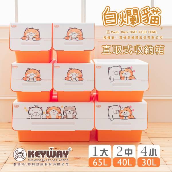 新款 白爛貓直取式收納箱(大+2中+4小) 掀蓋內收式,塑膠箱,衣物收納,收納箱,置物箱
