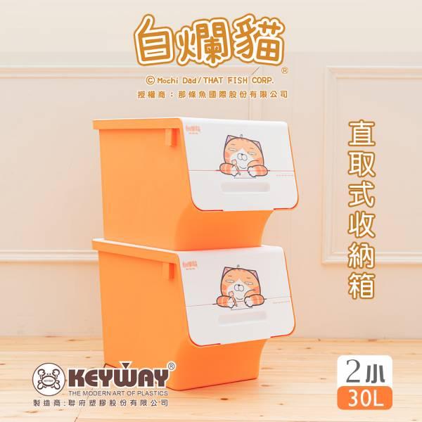 新款 白爛貓直取式收納箱(小) 二入 掀蓋內收式,塑膠箱,衣物收納,收納箱,置物箱