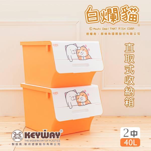 新款 白爛貓直取式收納箱(中) 二入 掀蓋內收式,塑膠箱,衣物收納,收納箱,置物箱