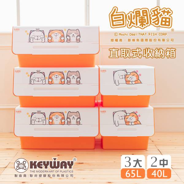 新款 白爛貓直取式收納箱(3大+2中) 掀蓋內收式,塑膠箱,衣物收納,收納箱,置物箱