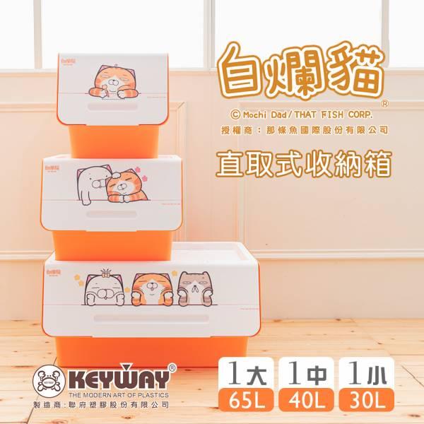新款 白爛貓直取式收納箱(大+中+小) 掀蓋內收式,塑膠箱,衣物收納,收納箱,置物箱