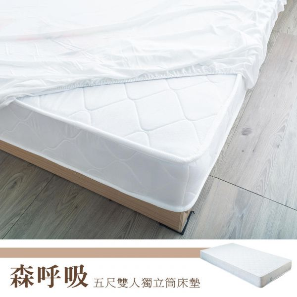 Kailisi 卡莉絲名床 5尺雙人獨立筒床墊 床組,床墊,床架,家具,dayneeds