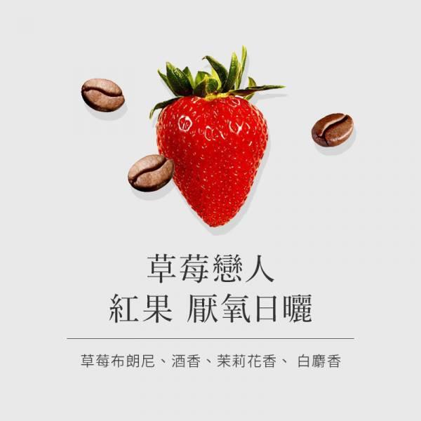 【伊索比亞 古吉】 草莓戀人 紅果厭氧日曬  •  單品咖啡豆 草莓,酒香,百香果,茉莉花,白麝香