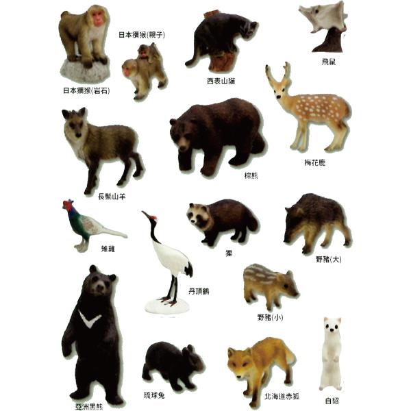 EIKOH 微型動物星球 買即贈隨機場景一組 動物世界 EX4 全套 共16款