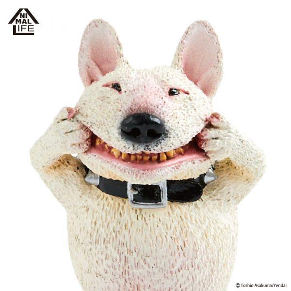 Animal Life 圓滾滾系列 笑嘻嘻 PART2 一中盒