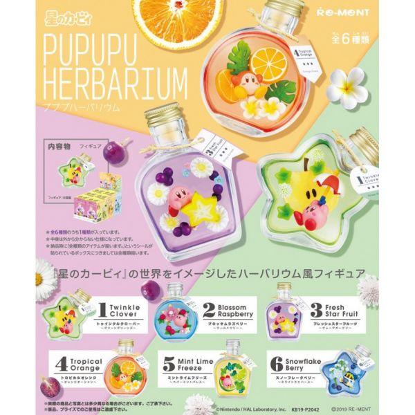 RE-MENT 星之卡比系列 PUPUPU HERBARIUM 水晶瓶 一中盒 6入 星之卡比,卡比之星,水晶瓶,小花瓶,盒玩,漂浮花盒,水果標本