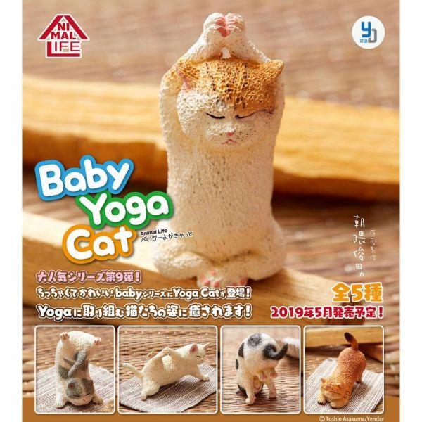 Animal Life 貓 瑜珈寶寶 (日本盒玩) 一中盒