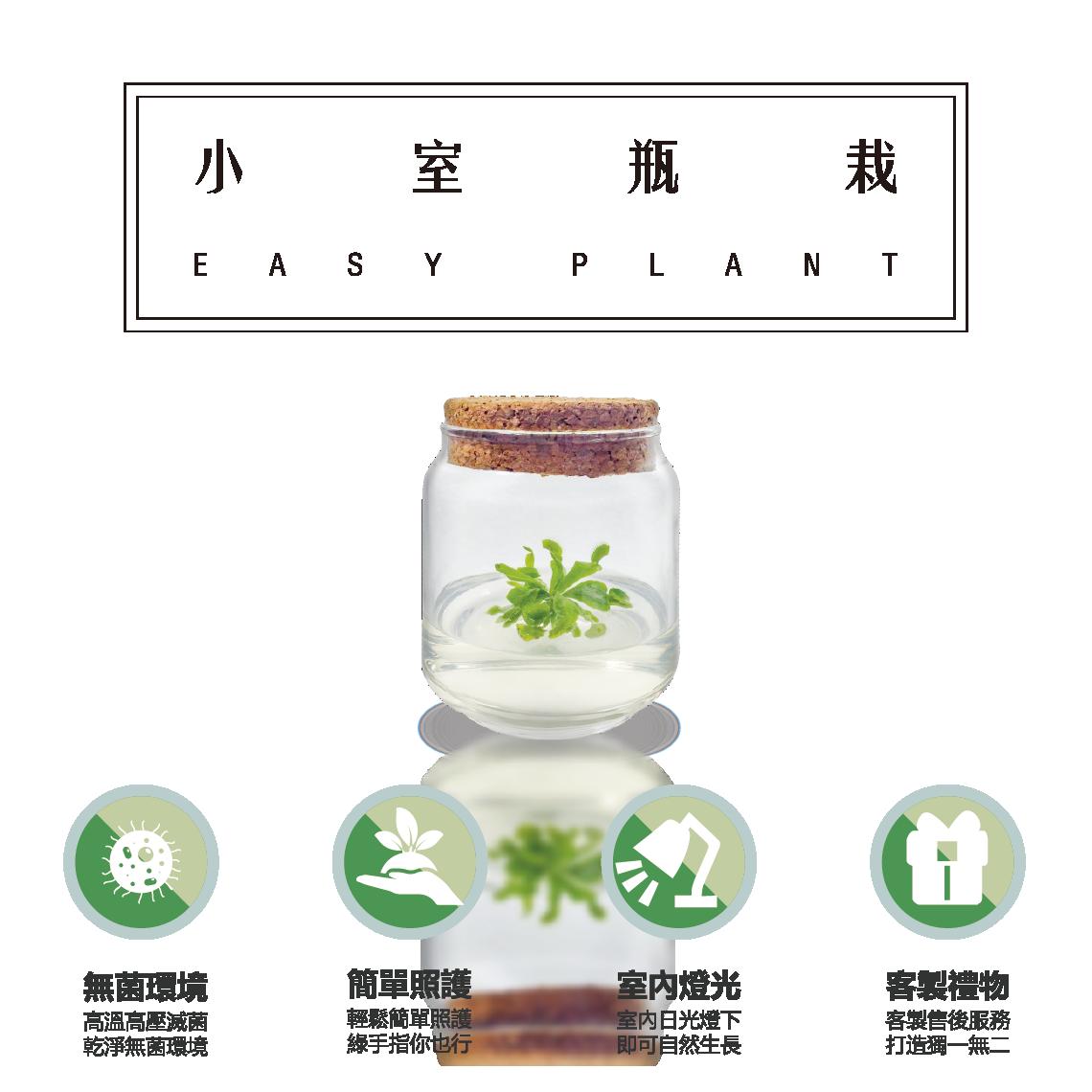 小室瓶栽 easyplant