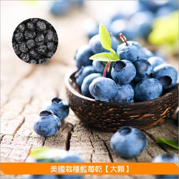 《分裝》美國栽種藍莓乾【大顆】1000g 麵包,糕點,零食,沙拉