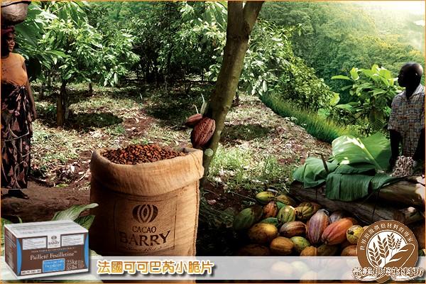 《分裝》法國可可巴芮小脆片 200g 可可巴芮,Cacao Barry