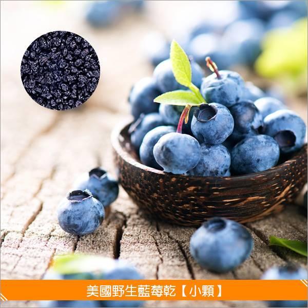 《分裝》美國野生藍莓乾【小顆】100g 麵包,糕點,零食,沙拉