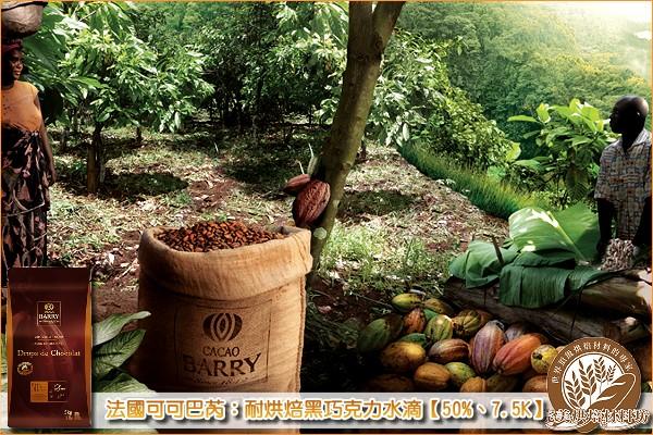 《分裝》法國可可巴芮:耐烘焙黑巧克力水滴【50%、7.5K】1000g 可可巴芮,Cacao Barry