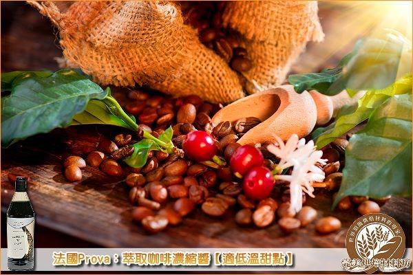 《分裝》法國Prova:萃取咖啡濃縮醬【適低溫甜點】120g Prova,咖啡濃縮醬
