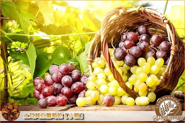 《分裝》土耳其白葡萄乾【小顆】1000g 土耳其,白葡萄乾