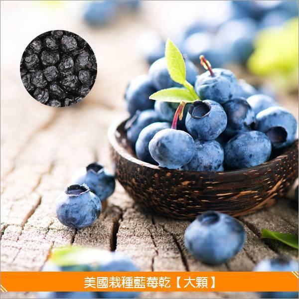 《分裝》美國栽種藍莓乾【大顆】100g 麵包,糕點,零食,沙拉