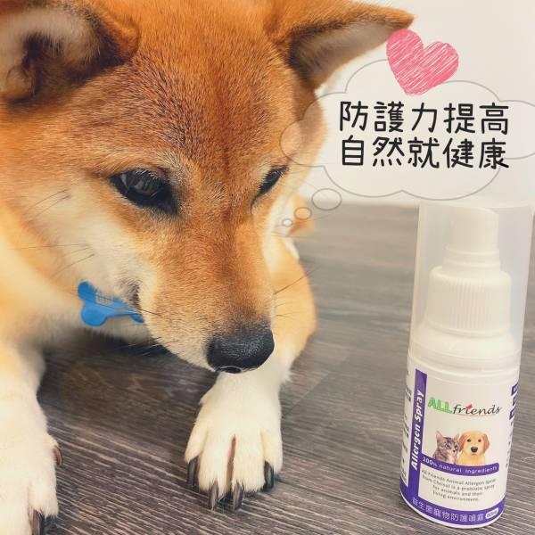 寵物防護益生菌噴霧 寵物 益生菌 皮膚 皮膚病 過敏