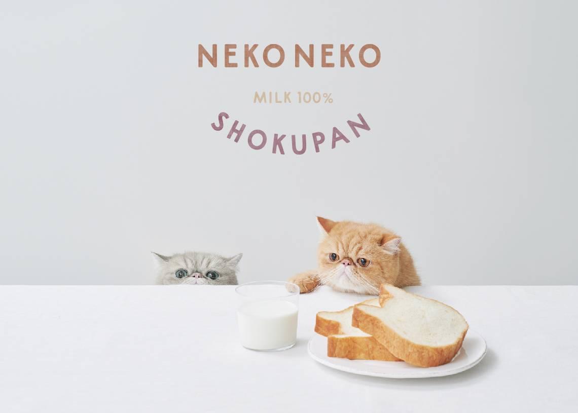 貓咪吐司ねこねこ食パン