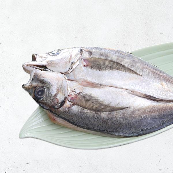 竹筴魚一夜干 竹筴魚一夜干,一夜干