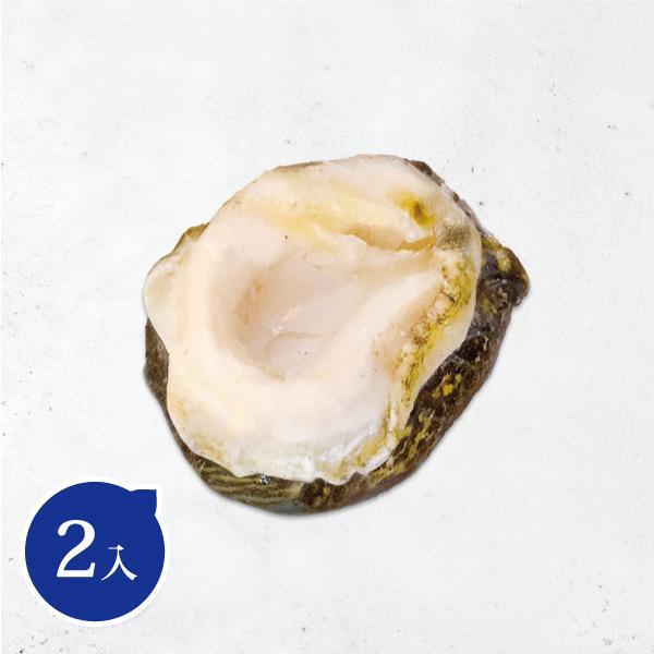 智利鮑魚 智利鮑魚,月子餐,養生料理,高級海鮮,南美鮑