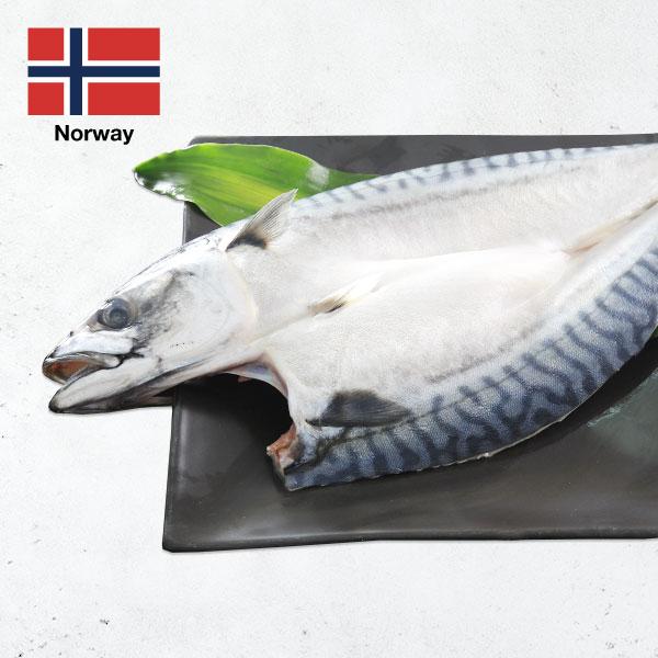 頂級挪威鯖魚一夜干 頂級挪威鯖魚一夜干,鯖魚一夜干,一夜干